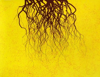 Eduardo Kac_Edunia Seed Pack Study (série Natural History of the Enigma)_2006_Litografia